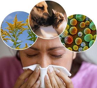 Аллергия и бронхит